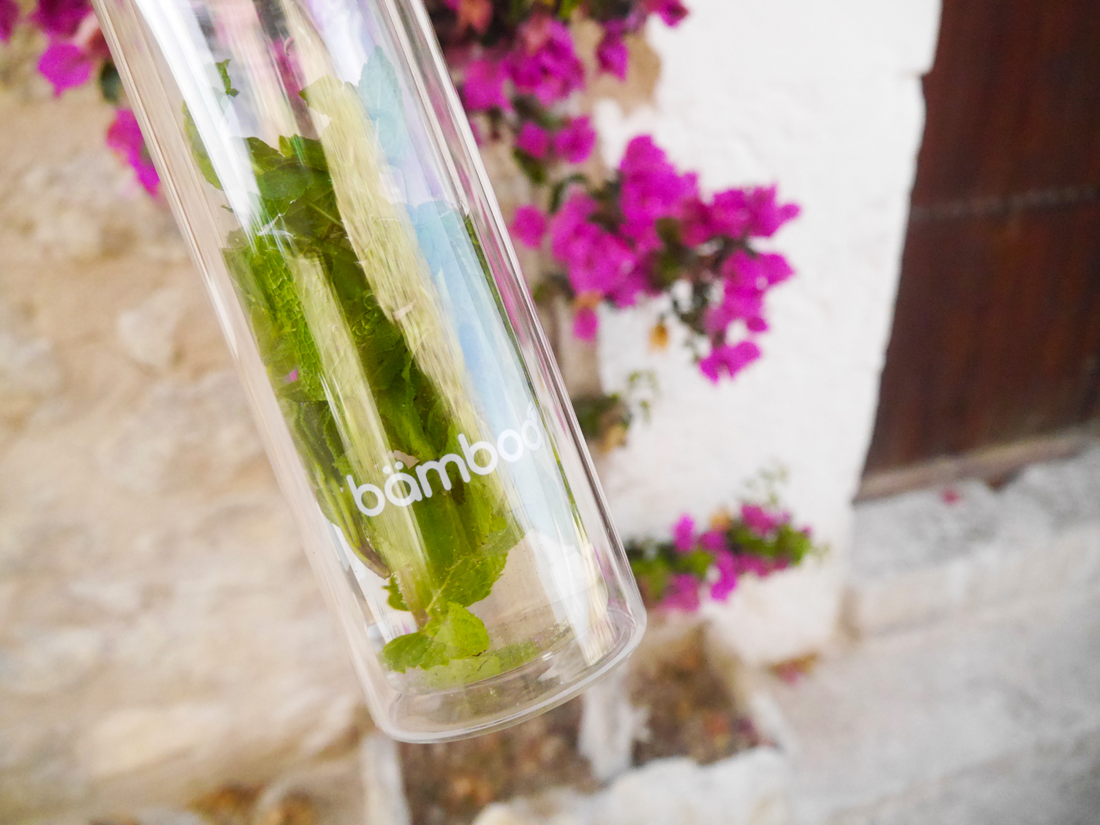 Infusion Bottle von bämboo - Teeflasche, Thermosflasche, Glasflasche, Infused Water, Smoothie, Tee
